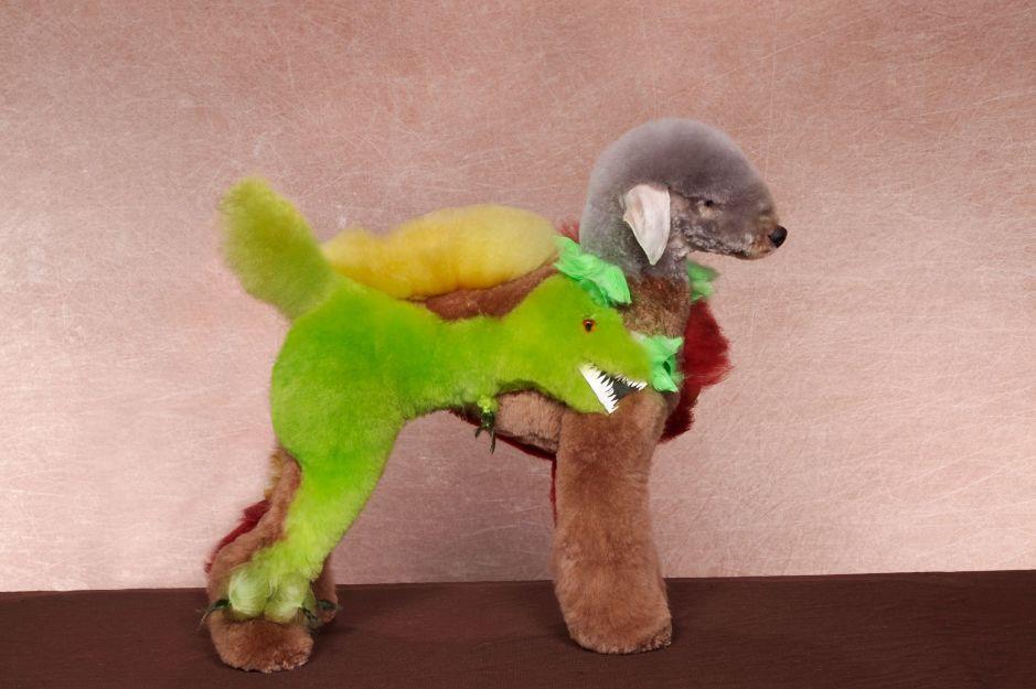Mad Groomed Dogs - Dinosaur 2