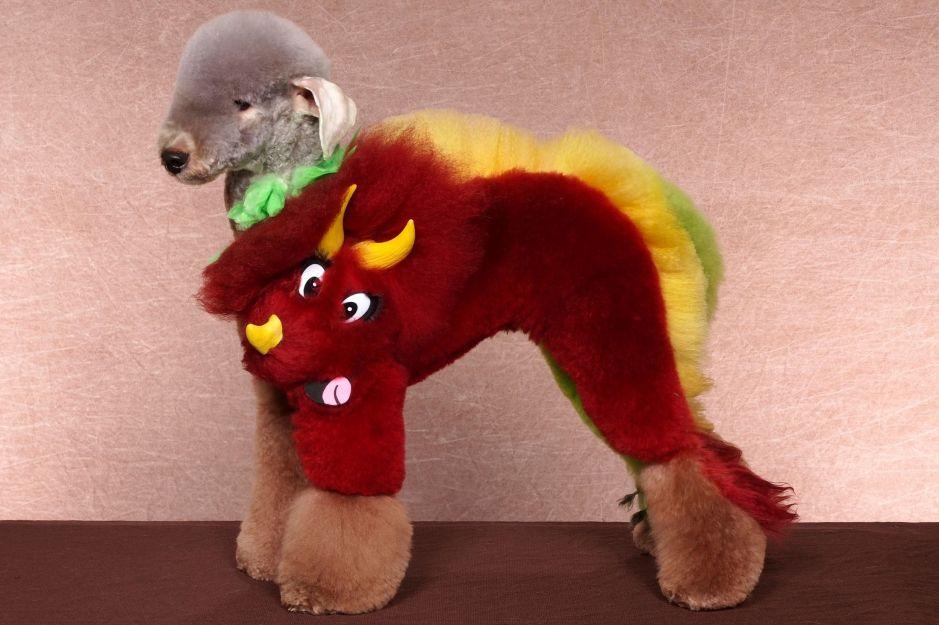 Mad Groomed Dogs - Dinosaur